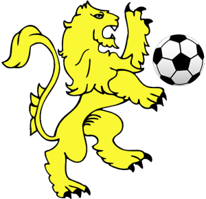 Dainfern Lions Football Club